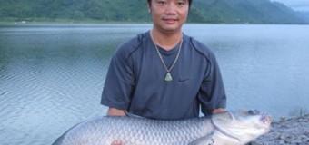 Bán mồi câu cá trắm đen hồ câu cực nhậy