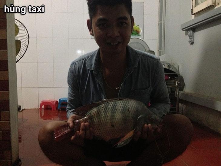 mồi câu cá rô phi hùng taxi