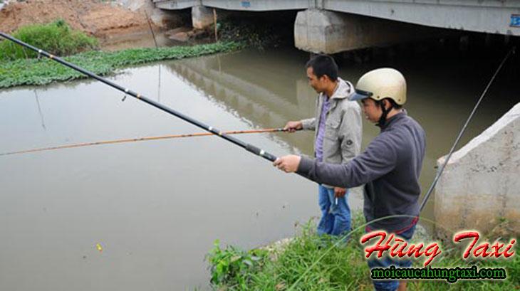 mồi câu cá trê sông