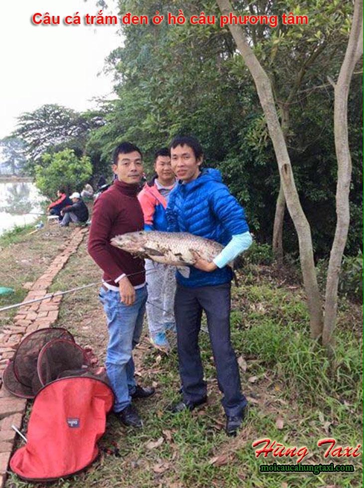 câu cá trắm đen tại hồ câu cá phương tâm