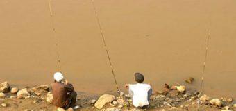 Đi câu cá sông hồng điểm câu sông hồng tuyệt đẹp
