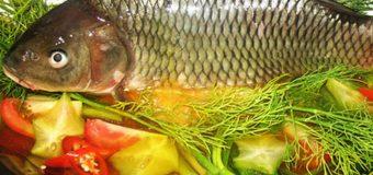 Câu cá mùa thu, câu cá chép mùa thu mồi gì