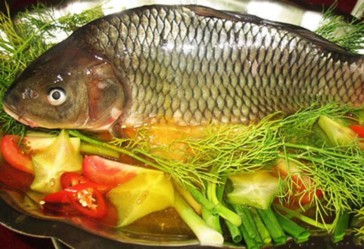 Câu cá chép mùa thu